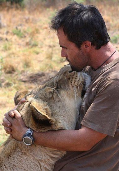 10 383x550 Кевин по прозвищу Лев