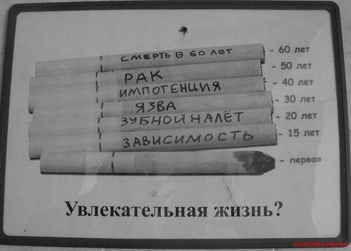 DR17iWMAzOU Перспективы курения