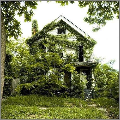 Dom v kotorom ne zhivut uzhe bolee 50 let. Природа берет своё
