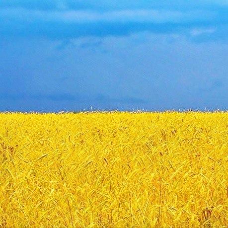 Rodina Украина Родина