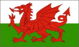 Bez nazvaniya22 Символы Британии