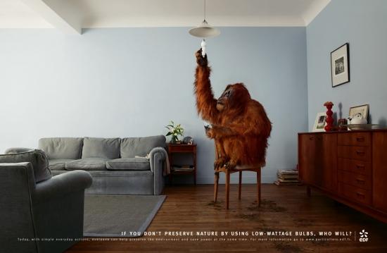 05 EDF Экологическая социальная реклама об энергосбережении