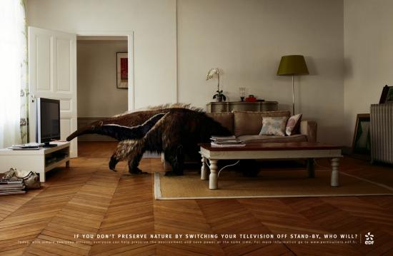 06 EDF Экологическая социальная реклама об энергосбережении