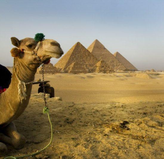1352064949 448255144 273a447fb1 b 550x533 Египетские пирамиды