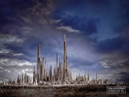 33 NABU Урбанизация разрушает природу
