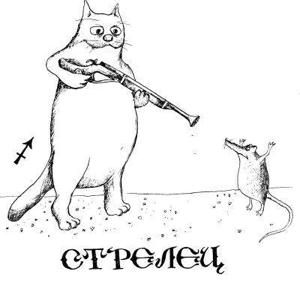 Bez nazvaniya10 Шуточно стихотворный гороскоп