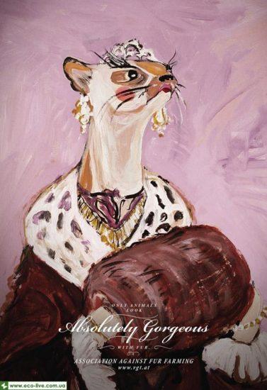 VGT Association against fur farming 1 0 377x550 Экореклама против убийства животных
