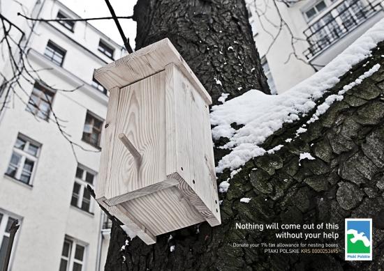ads 6 01 ptaki polskie Ничего не выйдет без вашей помощи