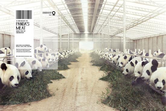 ads 6 19 conservation international 550x366 Когда есть экономический интерес, люди находят решения...