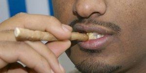 im 20140428150422 14569 Мисвак против зубной щетки: кто кого?