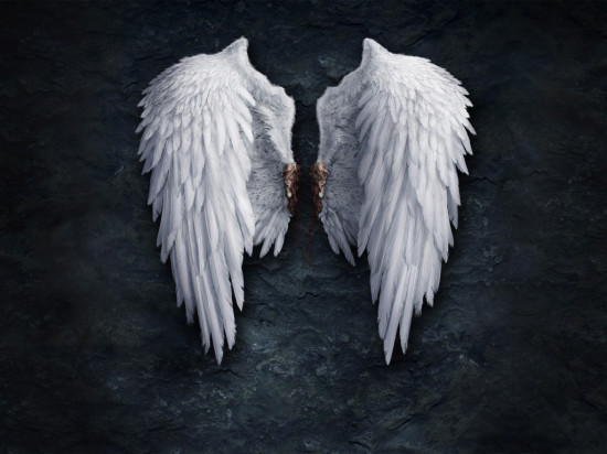 krilya angela 550x412 Горбун