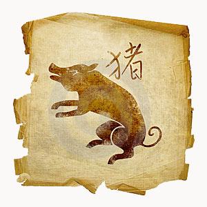 svin Восточный гороскоп. Свинья