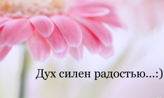 vetton ru 2czh 1920x1200 kopiya 550x329 Дух силен радостью