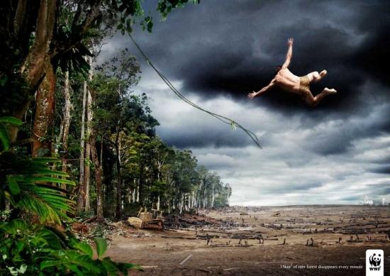wwf 00 Реклама от WWF по сохранению лесов