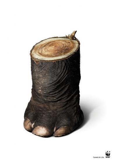 wwf 06 3 Реклама от WWF по сохранению лесов