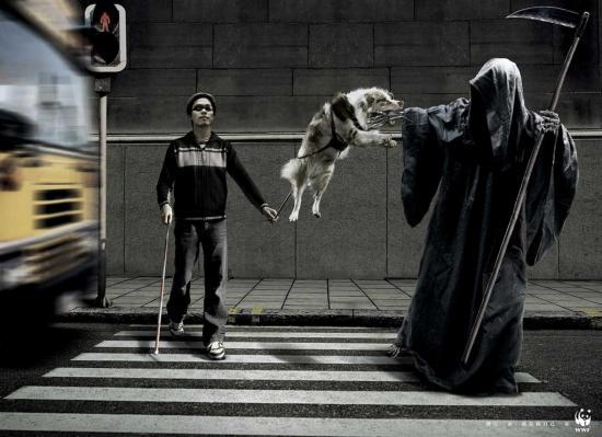 wwf 15 Плакаты о собаках от WWF
