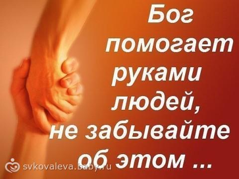 83217451.243228346 Бог помогает руками людей...