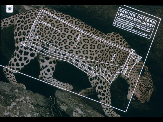 wwf 20 1 550x412 Плакаты от WWF   природа нуждается в рекламе