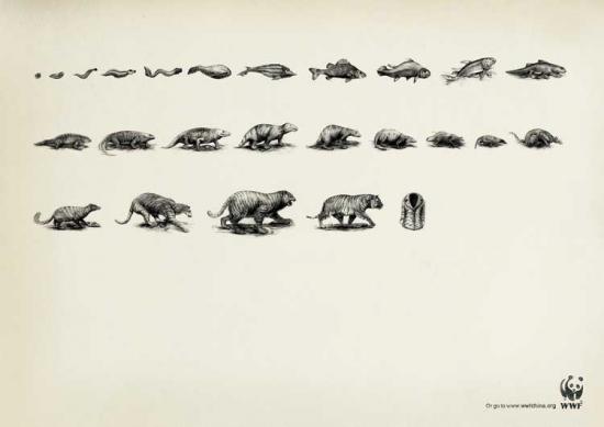 wwf 25 2 Плакаты от WWF   природа нуждается в рекламе