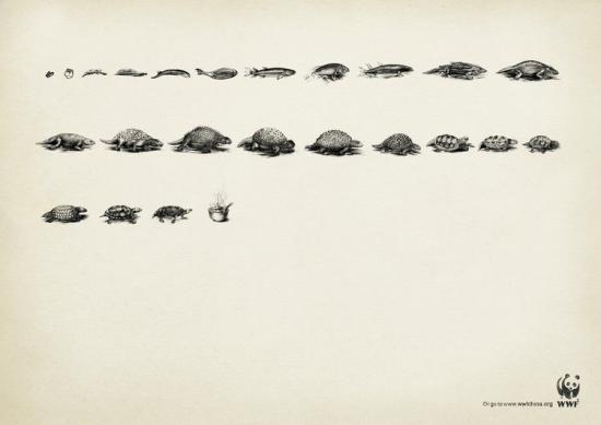 wwf 25 3 Плакаты от WWF   природа нуждается в рекламе