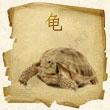 cherepaha Зороастрийский гороскоп. Черепаха
