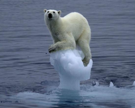 d0723e86 550x441 Глобальное потепление происходит на Земле неравномерно