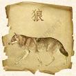 volk Зороастрийский гороскоп. Волк