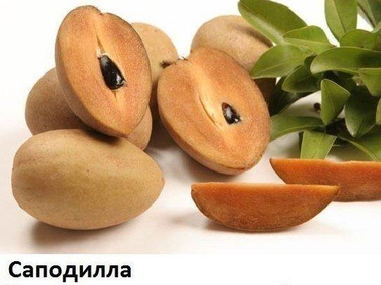 yZ0c59IanRk Экзотические фрукты