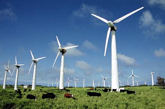 1251112193 1213170621 lnicy1 550x364  Энергия ветра: прогноз погоды