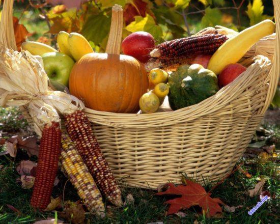62115 1280 1024 550x440 Самые полезные продукты времени сбора урожая