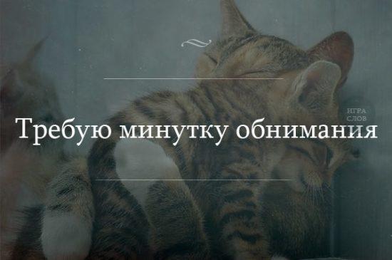 AveC5LbqcKk 550x365 Обнимая жизнь