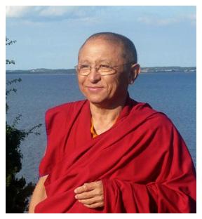 Chokyi Nyima Rinpoche DK ПУТЕВОДИТЕЛЬ ПО ЖИЗНИ И СМЕРТИ. Окончание