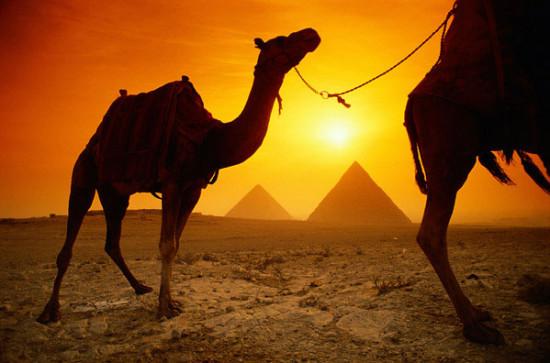 egpt1 550x363 Египет