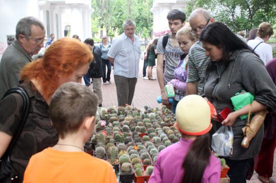 fi 550x366 Киевские выставки растений