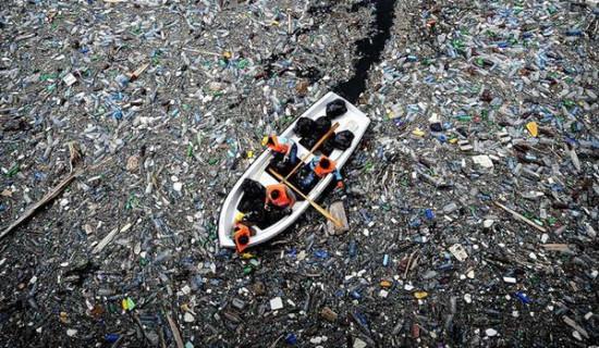 musor 550x320 Пластик как новый вид твердой материи