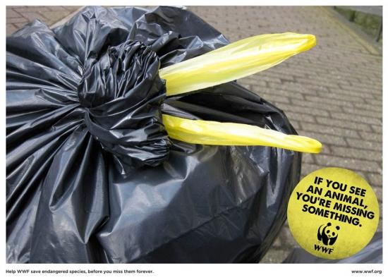 wwf part8 09 Природа нуждается в рекламе. Сопереживание