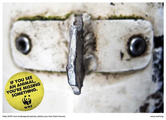 wwf part8 10 Природа нуждается в рекламе. Сопереживание