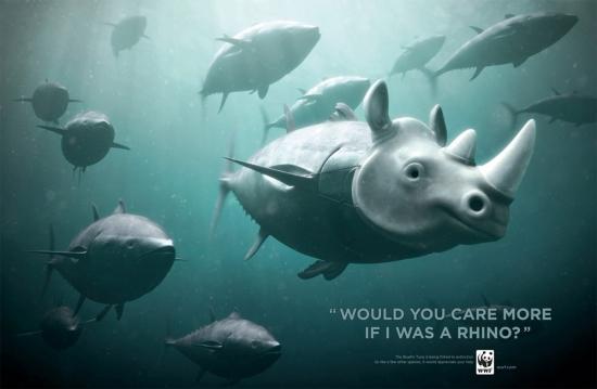 wwf part8 15 Плакаты от WWF за умеренный вылов рыбы