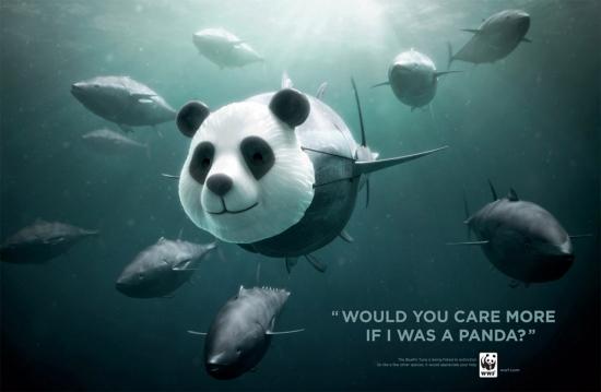 wwf part8 16 Плакаты от WWF за умеренный вылов рыбы