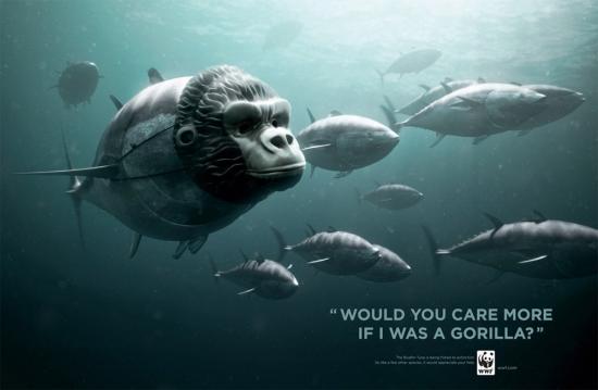 wwf part8 17 Плакаты от WWF за умеренный вылов рыбы