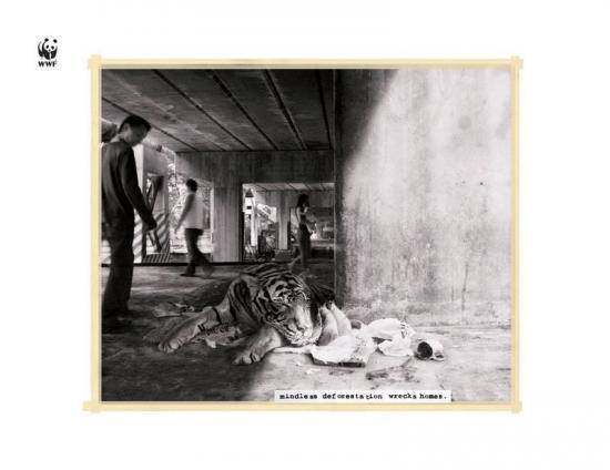 wwf 29 2 Плакаты от WWF против вырубки лесов