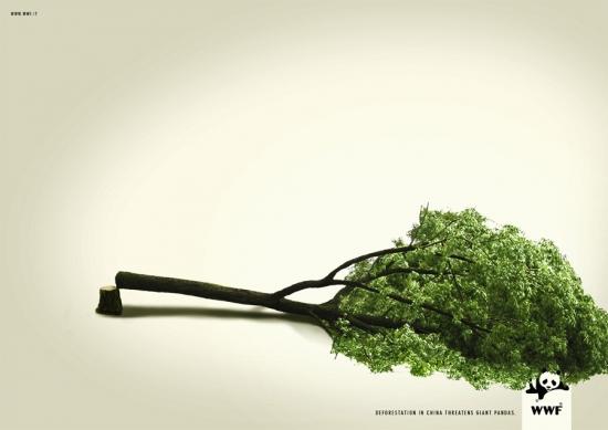 04 WWF против вырубки лесов