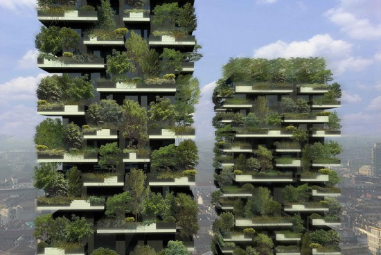 11 550x368 Лес на бетонных блоках