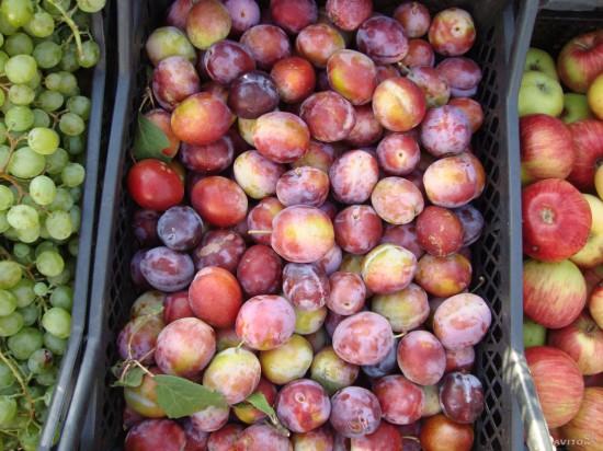 955984427 550x412 Чем полезны фрукты и ягоды сентября