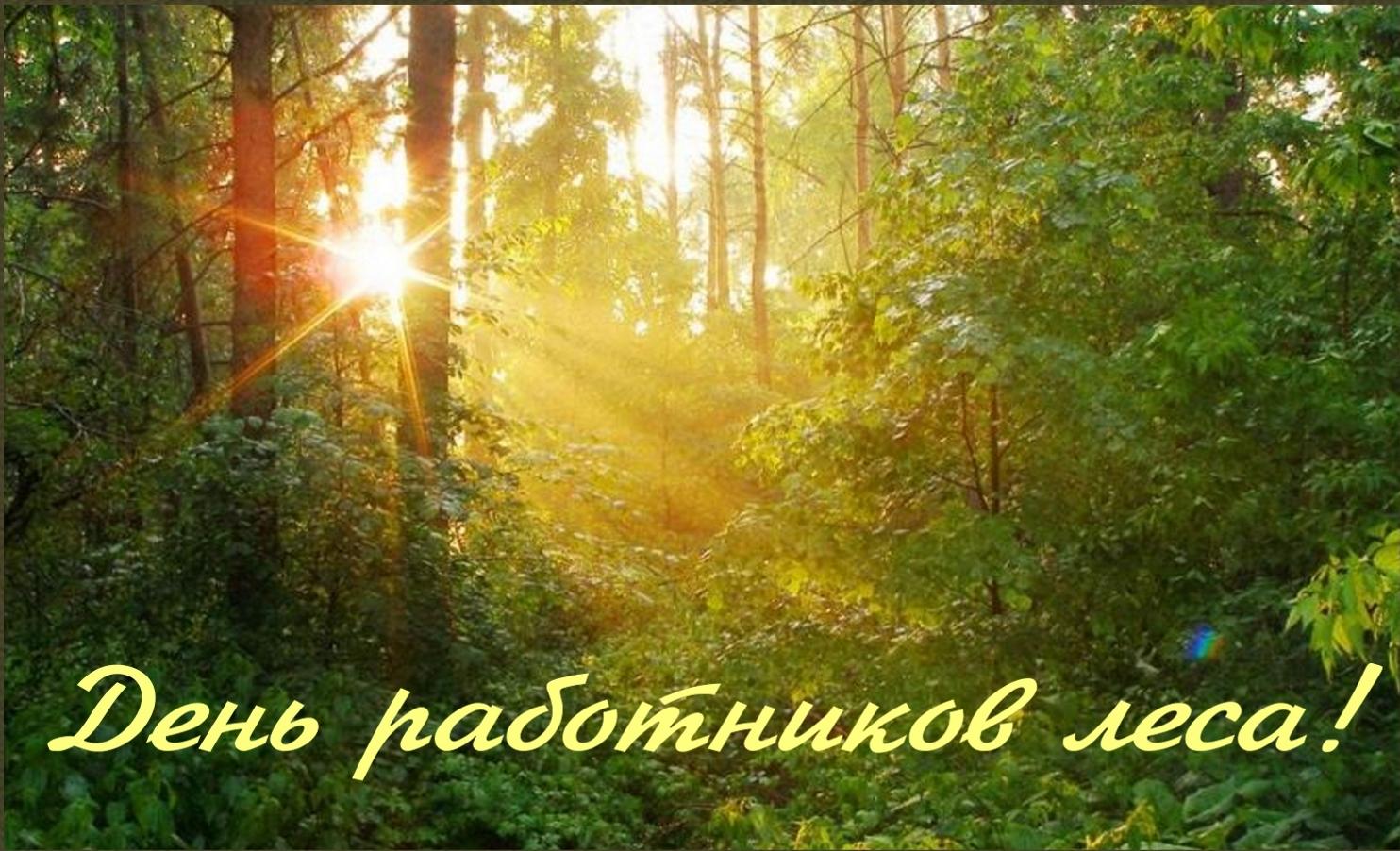 Когда день работника леса поздравления фото 563