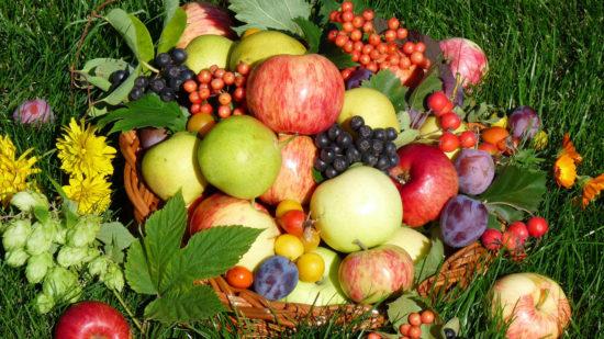 fruit wallpaper 1366x768 550x309 Природные жиросжигатели