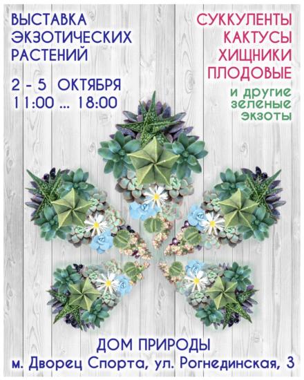 succulent show kiev 1 440x550 Выставка экзотических растений