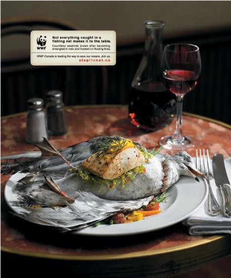 wwf 36 Экологическая реклама от WWF в защиту птиц