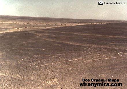1217073639 nasca019 Перуанская пустыня Наска и ее таинственные линии