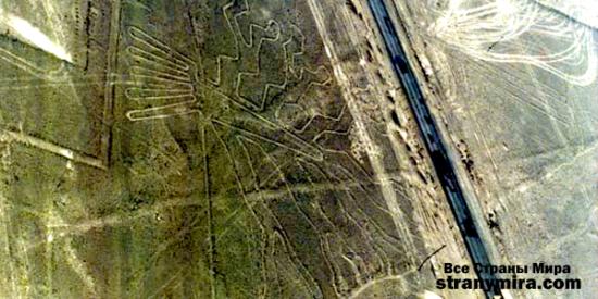 1217073864 6 large 550x275 Перуанская пустыня Наска и ее таинственные линии